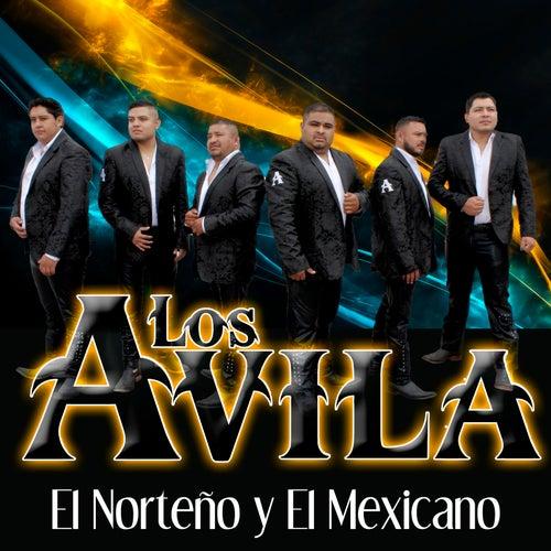El Norteño y el Mexicano by Avila