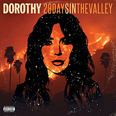 28 Days In The Valley von Dorothy