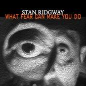 What Fear Can Make You Do von Stan Ridgway