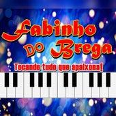 Tocando Tudo Que Apaixona! von Fabinho Do Brega