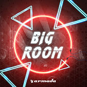 Big Room van Various Artists