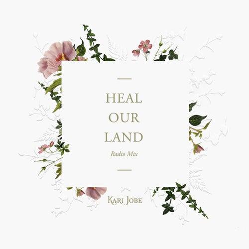 Heal Our Land (Radio Mix) by Kari Jobe