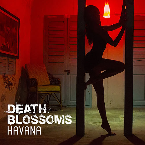 Havana – Headbanging to Camila Cabello by Death Blossoms