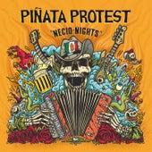 Necio Nights by Piñata Protest