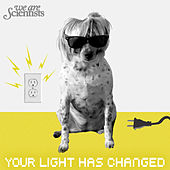 Your Light Has Changed by We Are Scientists