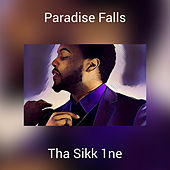 Paradise Falls von Various Artists