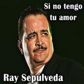Si No Tengo Tu Amor de Ray Sepulveda
