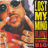 Lost My Mind by Ro James