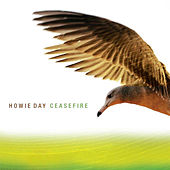 Cease Fire by Howie Day