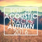 Top 20 Acoustic Tracks Autumn 2016 de Guitar Tribute Players