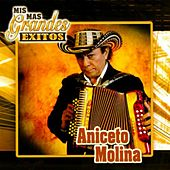 Mis Más Grandes Éxitos de Aniceto Molina