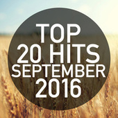 Top 20 Hits September 2016 de Piano Dreamers