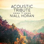 Acoustic Tribute to Niall Horan de Guitar Tribute Players