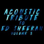Acoustic Tribute to Ed Sheeran, Vol. 3 de Guitar Tribute Players