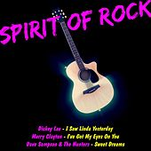Spirit of Rock by Various Artists