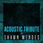 Acoustic Tribute to Shawn Mendes de Guitar Tribute Players