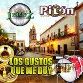 Los Gustos Que Me Doy de Various Artists