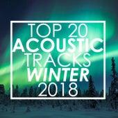 Top 20 Acoustic Tracks Winter 2018 de Guitar Tribute Players