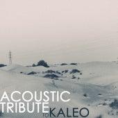 Acoustic Tribute to Kaleo de Guitar Tribute Players