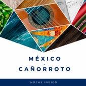 México - Cañorroto by Various Artists