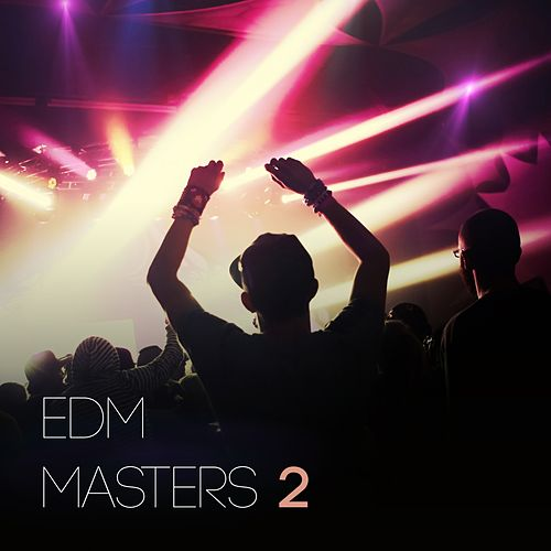 EDM Masters, Vol. 2 by Various Artists