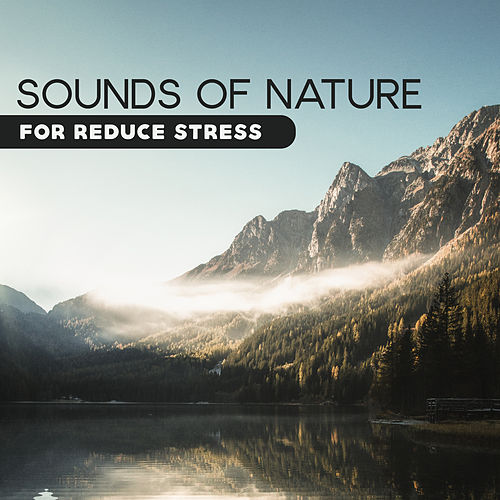 Sounds of Nature for Reduce Stress by Ambient Music Therapy
