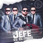 Mi Jefe Es El Mayo by Tamarindo Norteño
