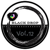 Black Drop Vol.12 by Various Artists