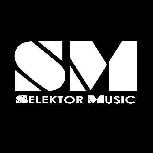 Selektor 2009 Sampler by Various Artists