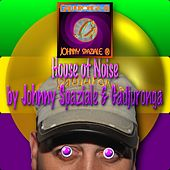 House of Noise di Johnny Spaziale