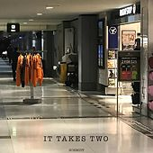 It Takes Two by Schmidt