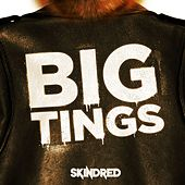 Big Tings by Skindred