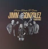 Porque Todavía Te Quiero by Jimmy Gonzalez y el Grupo Mazz