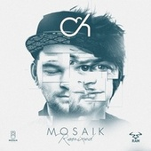 Mosaik (Remixes) di Camo And Krooked