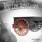 20 Exitos Trios by Trio Los Arrallanes