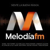 Melodía FM (Siente La Buena Música) de Various Artists