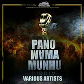 Panomama Munhu by Various Artists