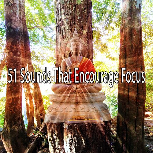 51 Sounds That Encourage Focus by Music For Meditation