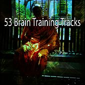 53 Brain Training Tracks by Classical Study Music (1)