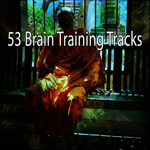 53 Brain Training Tracks de Classical Study Music (1)