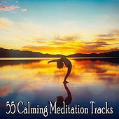 55 Calming Meditation Tracks von Lullabies for Deep Meditation