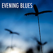 Evening Blues von Various Artists
