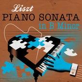 Liszt: Piano Sonata in B Minor by François René Duchable