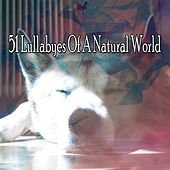 51 Lullabyes Of A Natural World by Lullaby Land