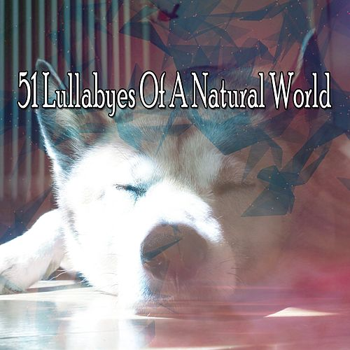 51 Lullabyes Of A Natural World de Lullaby Land