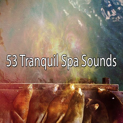 Best Relaxing SPA Music: