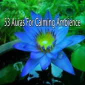 53 Auras For Calming Ambience de Meditación Música Ambiente
