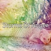 Storms Of Anger de Thunderstorm Sleep