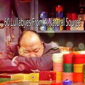 60 Lullabyes From A Natural Source de Relajación