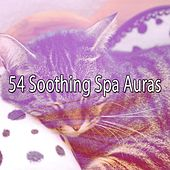 54 Soothing Spa Auras by Relaxing Spa Music